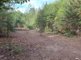 1732 Tall Pines Way - Photo 7