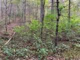 1732 Tall Pines Way - Photo 8