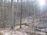 2.59 Acres Lones Branch Lane - Photo 2
