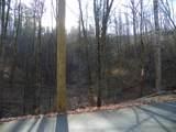 2.59 Acres Lones Branch Lane - Photo 3