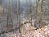 2.59 Acres Lones Branch Lane - Photo 4