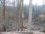 2.59 Acres Lones Branch Lane - Photo 5