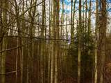 3185 Emerald Springs Loop - Photo 22