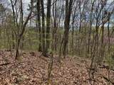 Lot 2 Overview/Nature Way - Photo 10