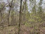 Lot 2 Overview/Nature Way - Photo 2