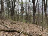 Lot 2 Overview/Nature Way - Photo 5