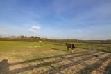 Saddle Lane - Photo 27
