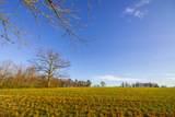 Saddle Lane - Photo 7