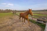 Saddle Lane - Photo 32