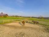 Saddle Lane - Photo 37