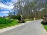 Lot 2 Hickory Point Lane - Photo 1