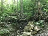 Black Walnut Flats Rd - Photo 3