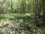 Cooper Hollow / Tilley Rd - Photo 1