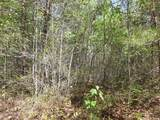Cooper Hollow / Tilley Rd - Photo 12