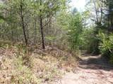 Cooper Hollow / Tilley Rd - Photo 13