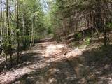 Cooper Hollow / Tilley Rd - Photo 15