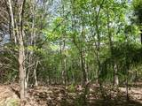 Cooper Hollow / Tilley Rd - Photo 17