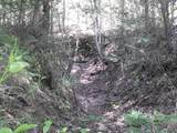 Cooper Hollow / Tilley Rd - Photo 19