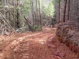 Cooper Hollow / Tilley Rd - Photo 21