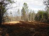 Cooper Hollow / Tilley Rd - Photo 22