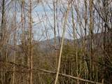 Cooper Hollow / Tilley Rd - Photo 25