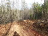 Cooper Hollow / Tilley Rd - Photo 28