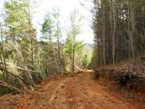 Cooper Hollow / Tilley Rd - Photo 30