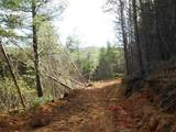 Cooper Hollow / Tilley Rd - Photo 31