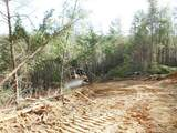 Cooper Hollow / Tilley Rd - Photo 32