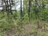 170 Fire Tower Road - Photo 21