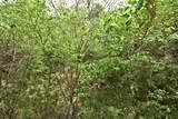 Lot 4-B1 Maranohe Way - Photo 4