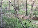 Cedar Ridge Rd - Photo 1