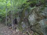 Limestone Rd - Photo 34