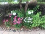 1029 Gettysvue Drive - Photo 3