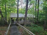 6157 Sandy Stand Rd - Photo 4