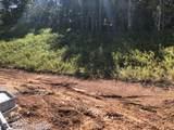 10203 Jumping Frog Lane - Photo 4