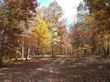 Forest Ridge Drive - Photo 13
