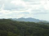 920 Falcon View Way - Photo 2