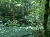 14.48 Acre Old Chilhowee Rd - Photo 1