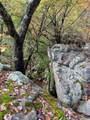 1280 Bluff View Rd - Photo 32