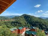 Mountain Ridge Way - Photo 6