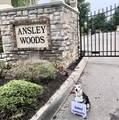 1211 Ansley Woods Way - Photo 24