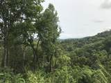 Lonesome Pine Way - Photo 2