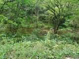Hardy's Creek Rd - Photo 3