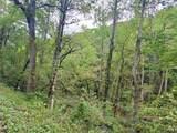 Hardy's Creek Rd - Photo 4