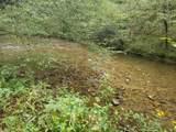 Hardy's Creek Rd - Photo 6