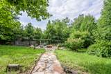 2295 Bluff Mountain Rd - Photo 4
