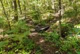 1236 Chestnut Creek Way - Photo 5