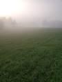 Misty Mead Drive - Photo 4