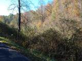 Haney Hollow Rd - Photo 4